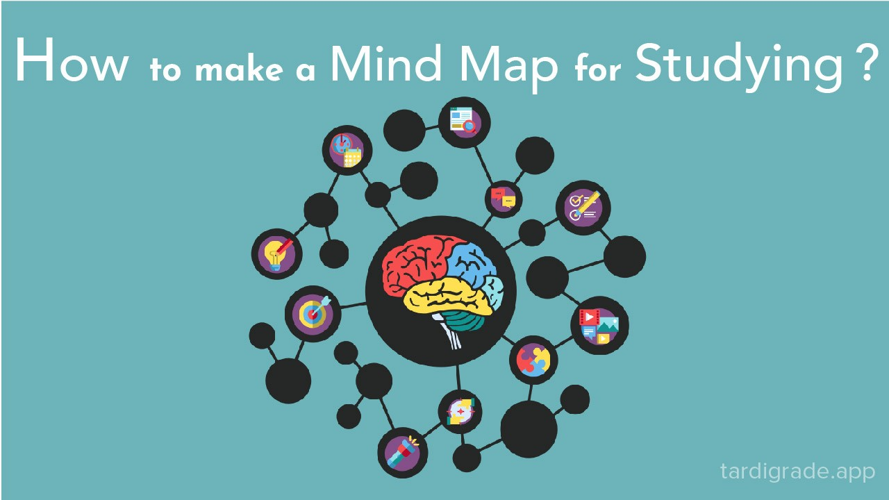 How to make a Mind Map for studying?