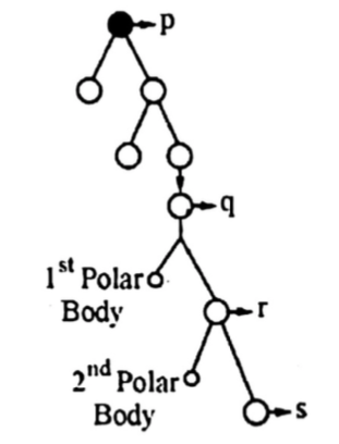 Biology Question Image